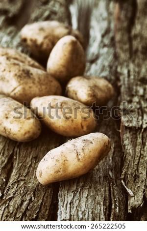 Fresh organic potatoes. Healthy food. Fresh vegetables - stock photo