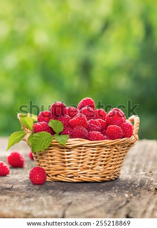 Fresh, organic raspberries in the basket on the table  - stock photo
