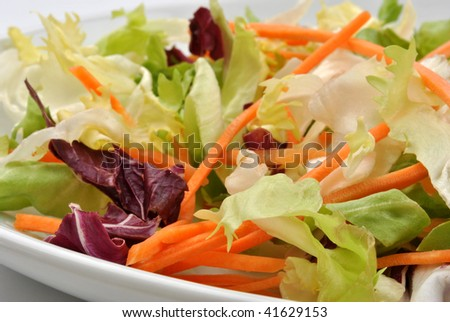 fresh organic salad on a white plate