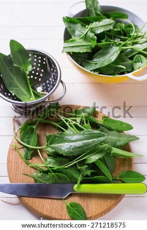 Fresh organic sorrel on wooden board on white painted wooden planks. Selective focus. - stock photo
