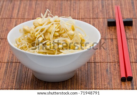 Fresh organic soy bean sprouts in bowl - stock photo
