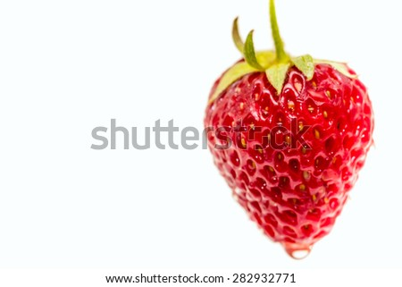 Fresh organic strawberry with water drops on white background. Macro photo