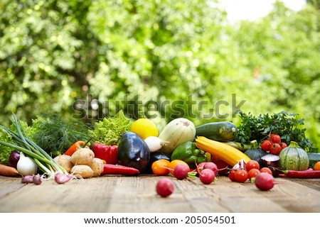 Fresh organic vegetables ane fruits on wood table  in the garden  - stock photo