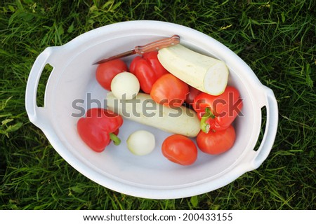 Fresh organic vegetables in a basket on a grass - stock photo