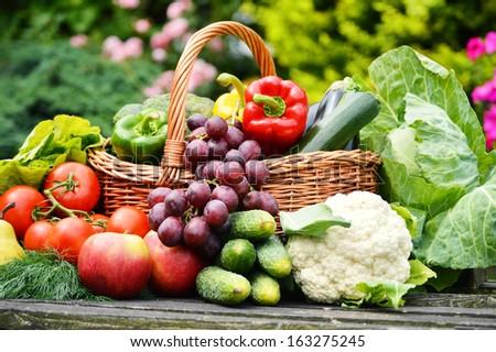 Fresh organic vegetables in wicker basket in the garden - stock photo