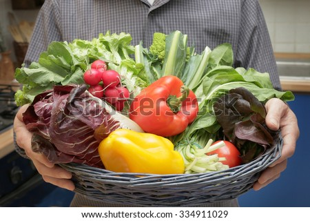 fresh organic vegetables ready for cooking - mans hands closeup holding a vegetable basket freshly harvested tasty vegetables for vegetarian or vegan diet - concept of organic farming and healthy food - stock photo