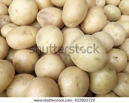 Fresh organic white potatoes sold on market