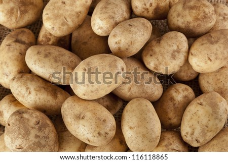 Fresh Organic Whole Potato on a background - stock photo