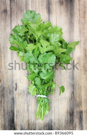 Fresh, organically grown coriander or cilantro on a wooden chopping board. - stock photo