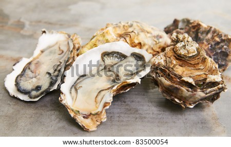 fresh oyster on mable table top ready to serve