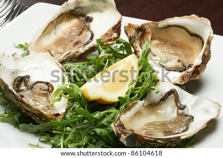 fresh oyster seafood served with lemon and arugula - stock photo