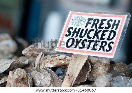 Fresh Oysters caught in the Chesapeake Bay - stock photo