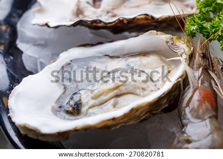 Fresh oysters in a white plate with ice