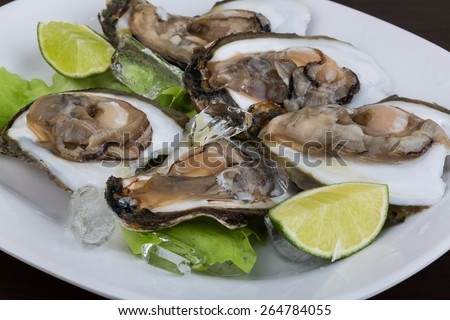Fresh oysters in the bowl with ice - stock photo