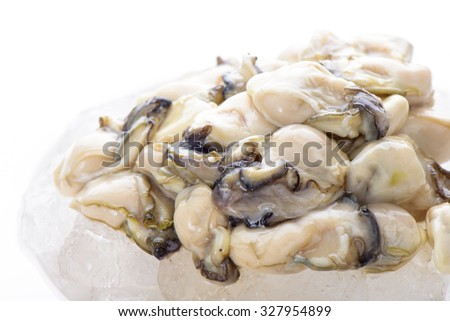 fresh oysters on the ice in white plate - stock photo