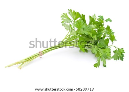 Fresh parsley - stock photo