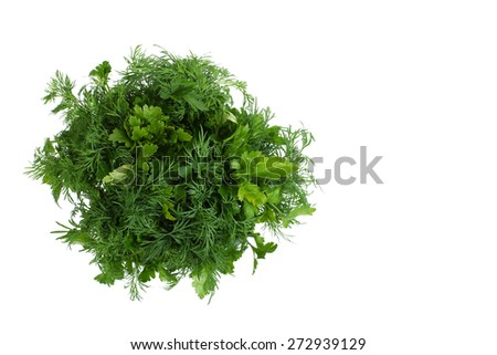 fresh parsley and dill isolated on white - stock photo