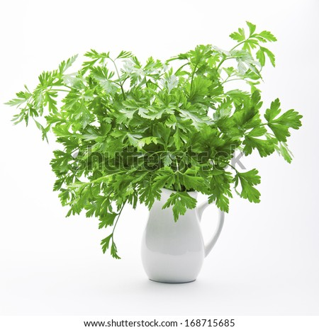 Fresh parsley in the milkman on a white background - stock photo