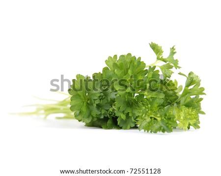 Fresh parsley isolated - stock photo