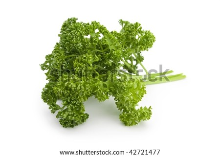 Fresh parsley isolated on white with natural tone of color and shadow.