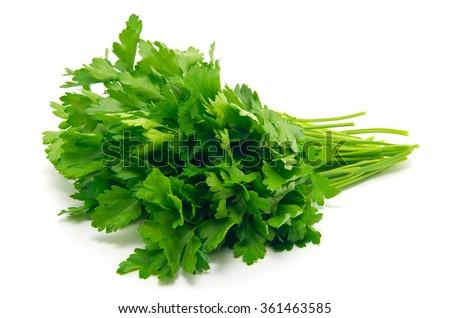 Fresh parsley on white background - stock photo