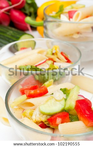 Fresh Pasta Salad With Tomatoes, Pepper, Cucumber, Radish and Lettuce