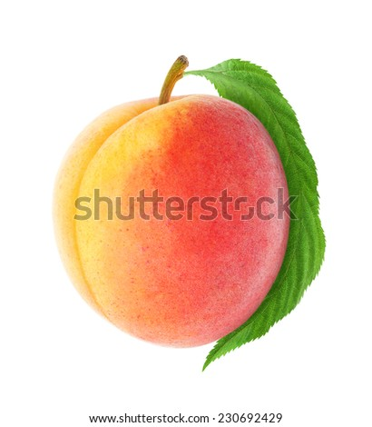 Fresh peach with leaf isolated on white - stock photo