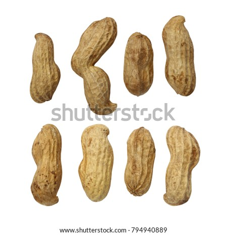 fresh peanut collection isolated on white background and have clipping paths with create from pen tool function.