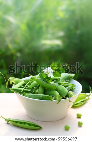 fresh peas in a white bowl on the table - stock photo