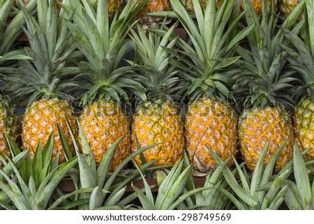 Fresh pineapple for sale in Vietnam - stock photo