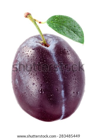 Fresh plum with drops isolated on white background. - stock photo