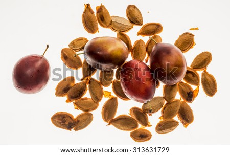 Fresh plums in drops of dew over plum stones, isolated on white