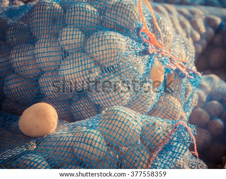 fresh potatoes in the bags, potatoes, view on bags and crates of potato in storage house - stock photo