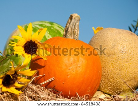 Fresh produce with sunflowers on bale of hay against blue skies - stock photo
