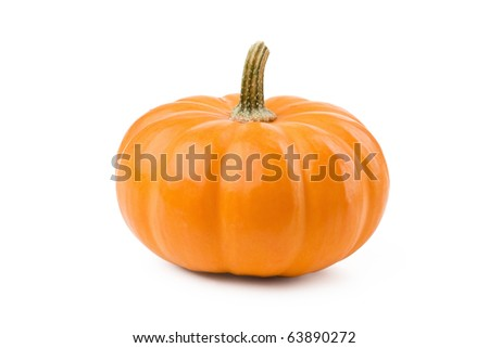 Fresh pumpkin isolated on white. For Halloween, thanksgiving holiday and Autumn theme.