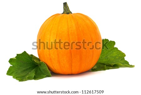 Fresh pumpkin with leaves isolated on white background. For Halloween, thanksgiving holiday, autumn theme. - stock photo