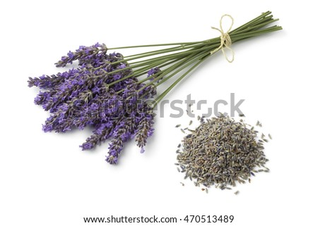 Fresh purple lavender and dried flowers on white background