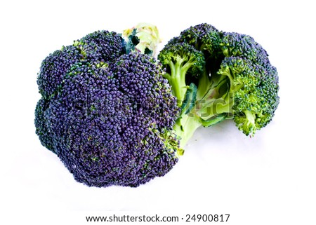 Fresh purple sprouting broccoli isolated on white - stock photo