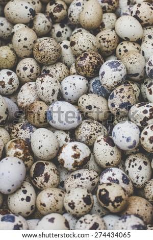 fresh quail eggs on a farmers market soft focus overhead-angle shot - stock photo