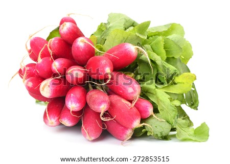 Fresh radish - stock photo