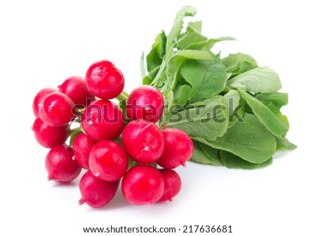 Fresh radish on white background - stock photo