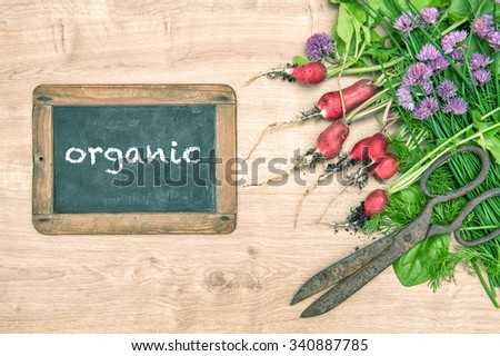 Fresh radish with green garden herbs. Vegetables and chalkboard with sample text organic. Healthy food ingredients - stock photo
