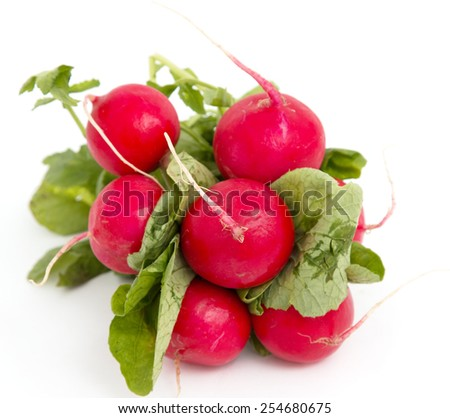 fresh radishes on a white background - stock photo