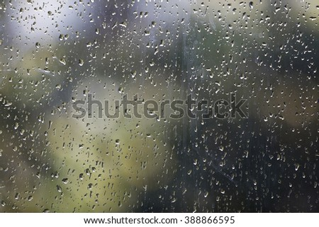 Fresh rain splash drops on a window with background green nature in Blur