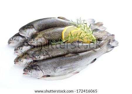 fresh rainbow trouts on white background - food and drink