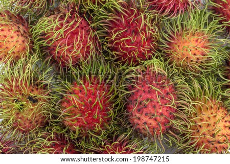 Fresh rambutan - stock photo