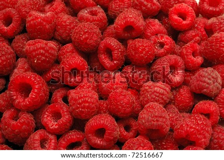 fresh raspberries - stock photo