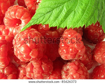 Fresh raspberries background with leaves. Studio shot.