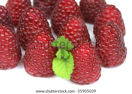 Fresh raspberries with a lemon balm leaf. Closeup fruit on a white background.