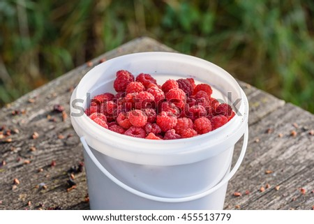 Fresh raspberry in the bucket on the wooden table - stock photo